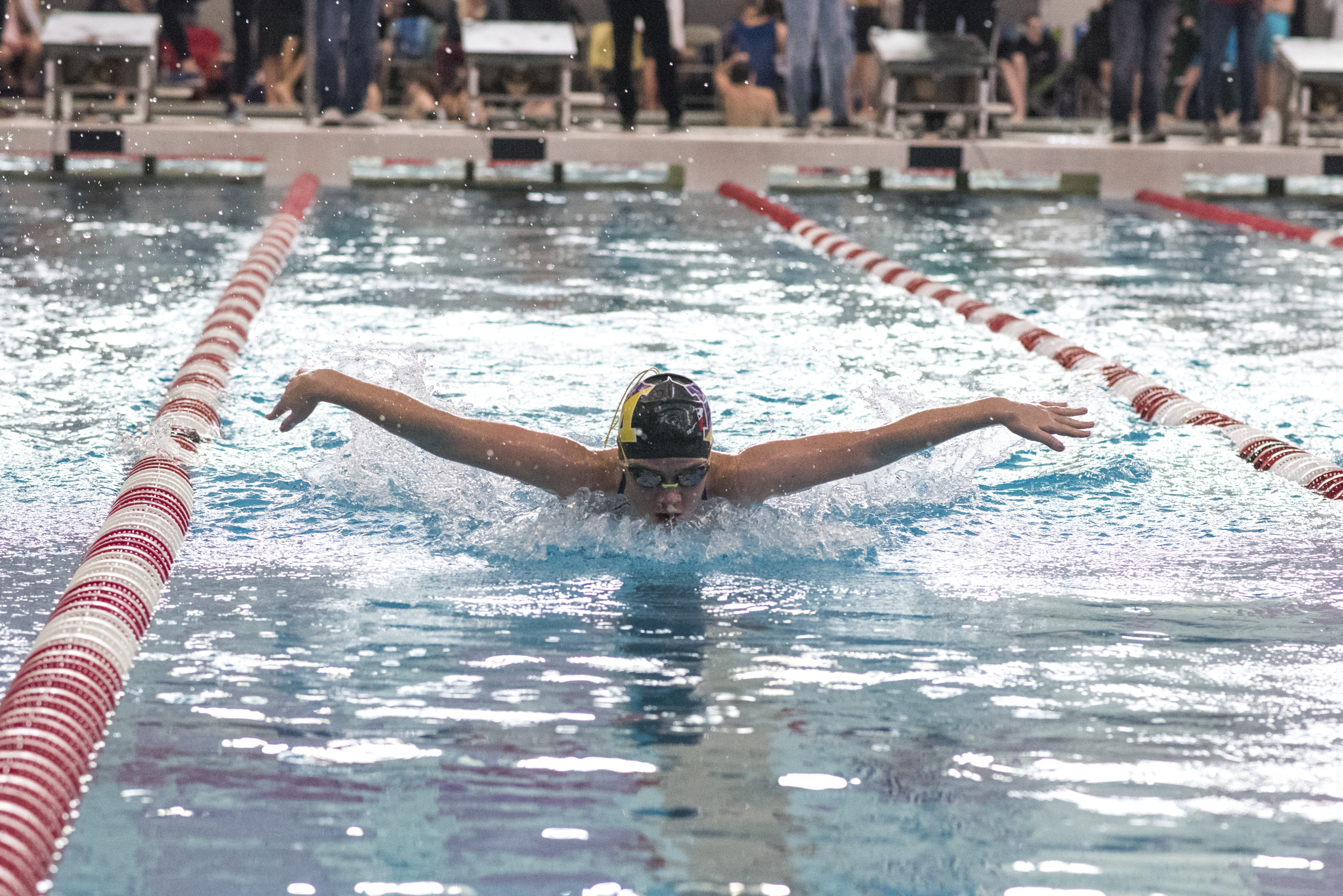 Swimming Wins AACA Championship for Third Consecutive Year