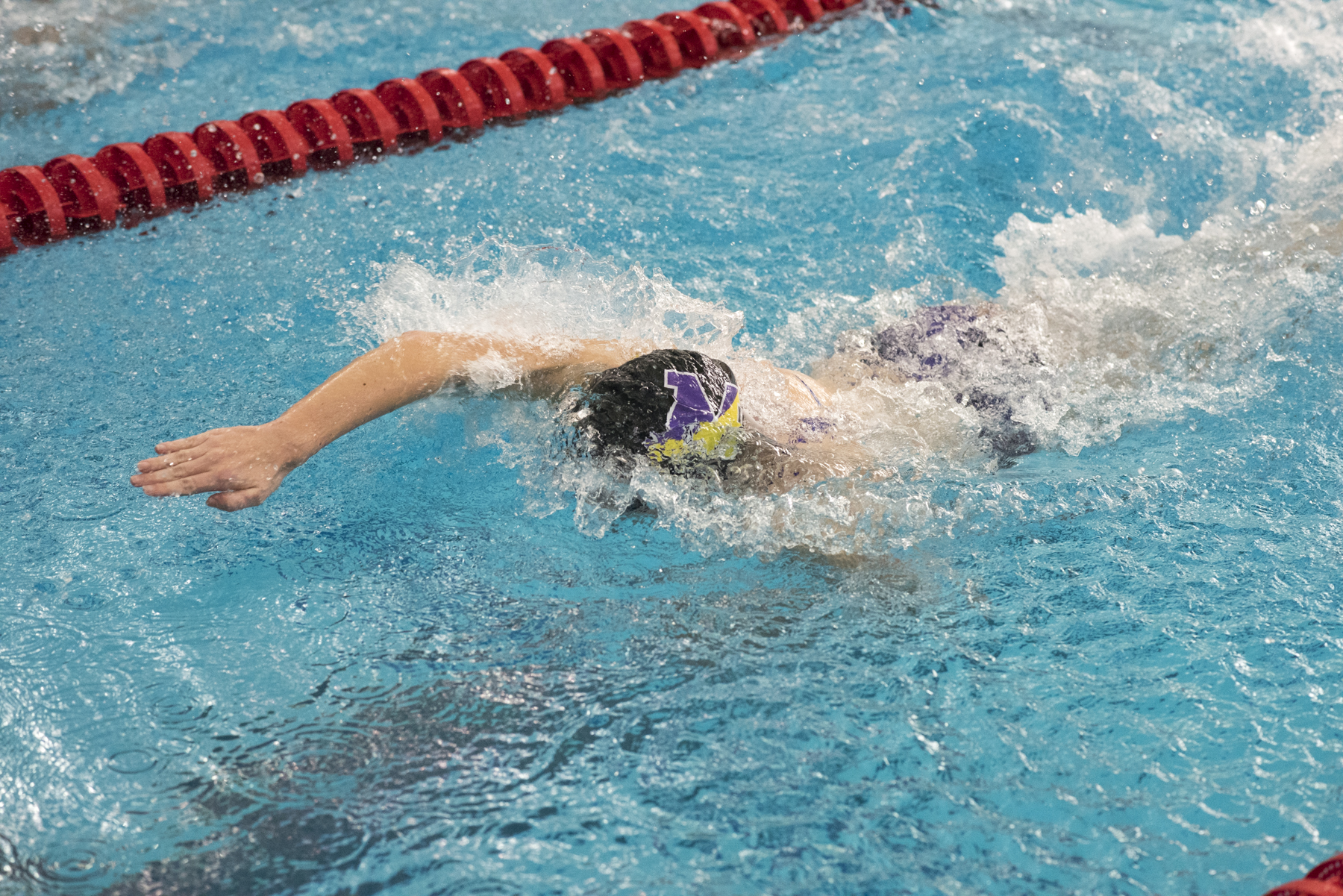 Five Swimmers Qualify for States